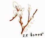 Flower205