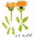 Flower207