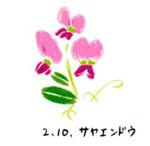 Flower210