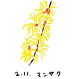 Flower211