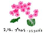 Flower212