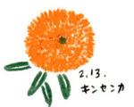 Flower213