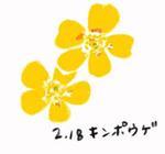 Flower218