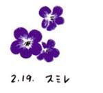 Flower219
