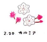 Flower220