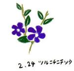 Flower224