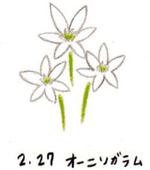 Flower227