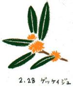 Flower228