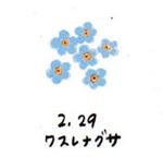 Flower229