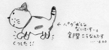 1112kutsusitaneko_2