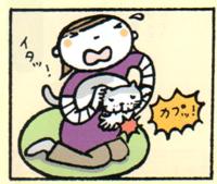 Nekonokimochi11e